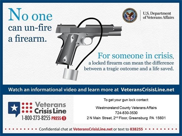 VA locked firearm poster
