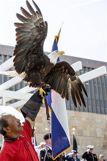 VA Photo: Eagle at VA Rocky Mountain riboon cutting