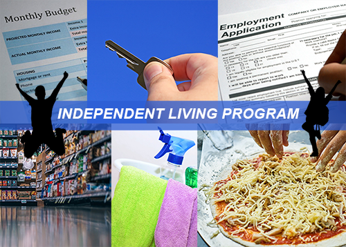 Pic collage of budgeting, cleaning, cooking, employment app, and silhouette of male and female youth