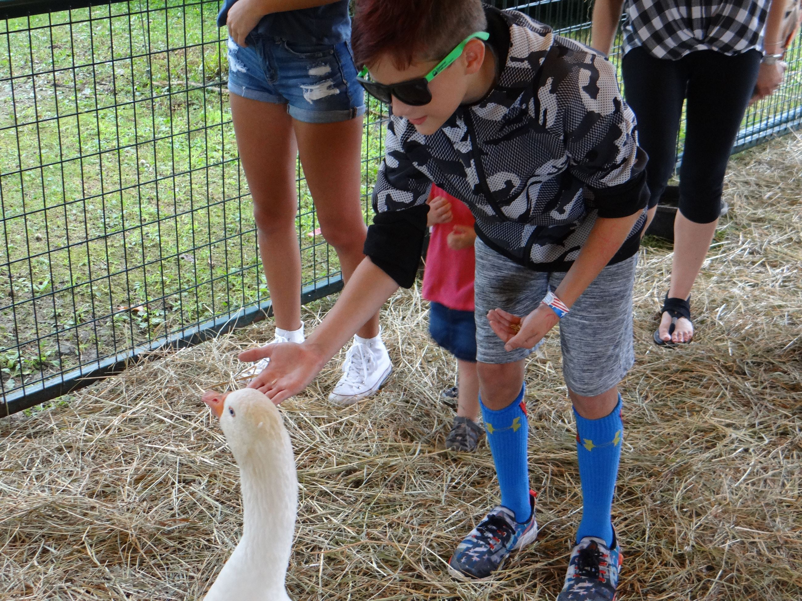 Petting animals at the Labor United Celebration