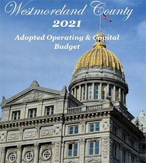 2021 Adopted Budget Courhouse Image