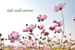 pink flowers in field with get well soon text