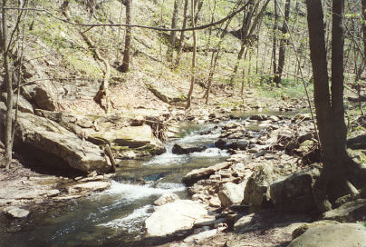 Cedar Creek Gorge