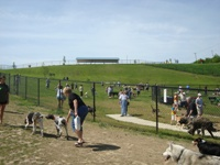 Franklin Dog Park